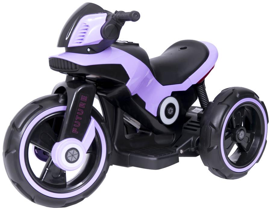 sw 198 violet DSC0745 1x1